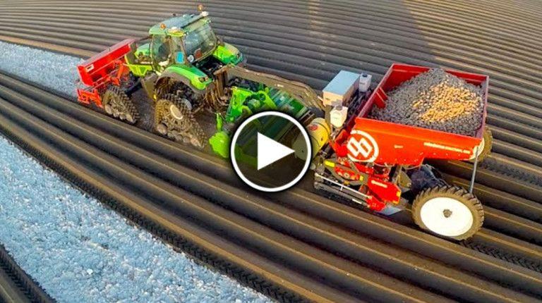 Как садят картофель в Голландии (видео)